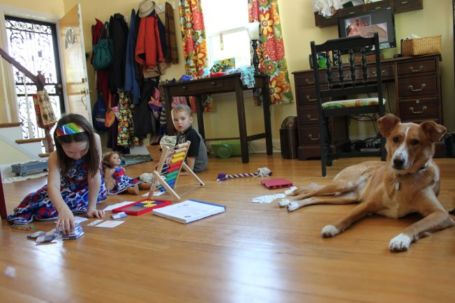 A scene from our homeschooling life, spring 2013